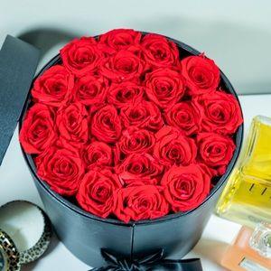 🔥HOSTPICK🔥Real Roses R Red Preserved Roses 🌹